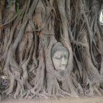 P4043092 150x150 - Itinerario de viaje de 15 días recorriendo Tailandia