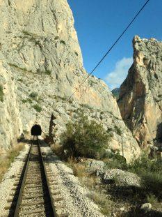tram_diesel