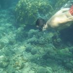 img 1704 1 150x150 - Sur de Vietnam y la isla de Phu Quoc, último gran viaje solos