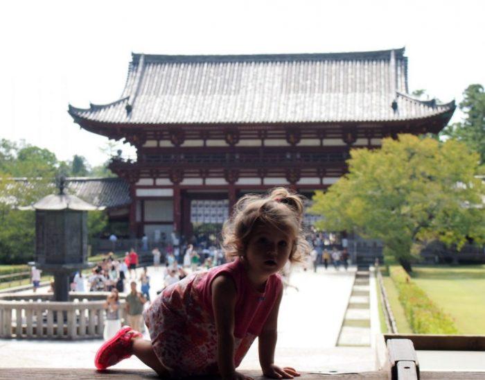 Excursión a Nara desde Kioto con el Japan Rail