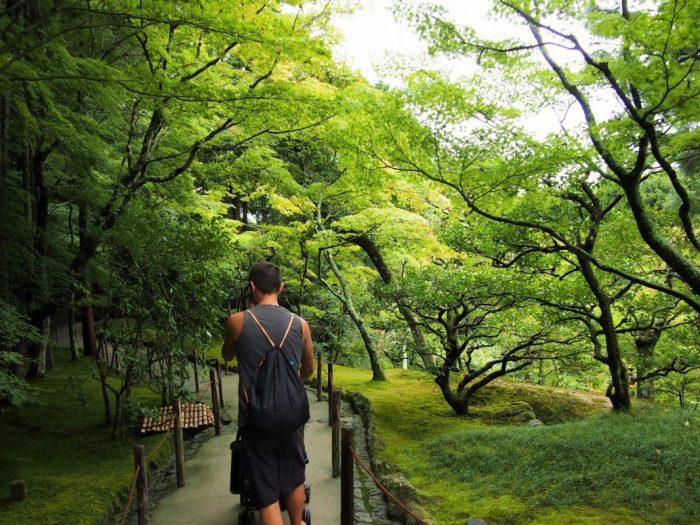 Lo que debes de visitar en una estancia en Kioto