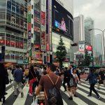 img 5884 1 150x150 - ¿Qué visitar en Japón con niños?