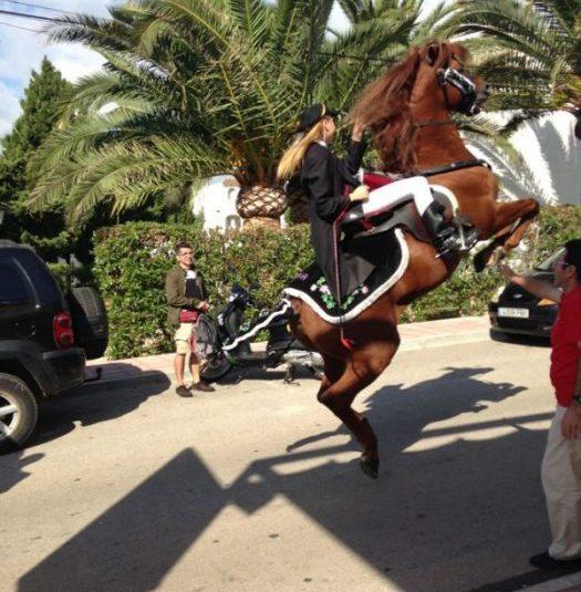 caballos alior