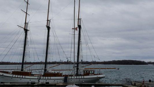 harbour_toronto (4)