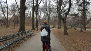 Paseando por centralpark 300x169 - Parques infantiles en Nueva York