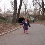 central park 2 150x150 - Parques infantiles en Nueva York