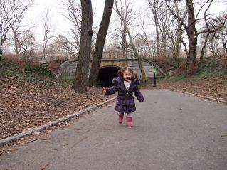central park 2 319x239 - Parques infantiles en Nueva York
