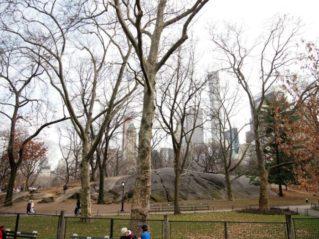 central park e1532446605744 319x239 - Parques infantiles en Nueva York