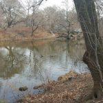 centralpark 150x150 - Parques infantiles en Nueva York