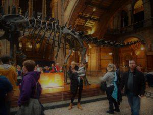 londres museo historia natural 2 300x225 - Londres con bebé: Nuestro itinerario de 4 días