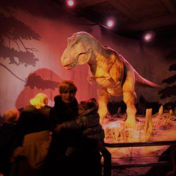 londres museo historia natural 3 356x356 - ¿Qué hacer gratis o casi gratis en Londres con bebé?