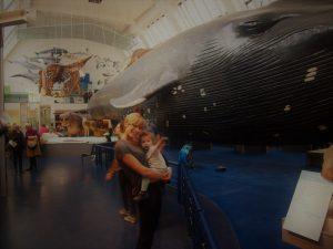 londres museo historia natural 4 300x225 - Londres con bebé: Nuestro itinerario de 4 días