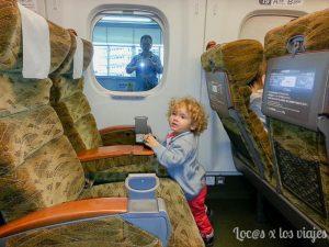 Japón en tren 4 300x225 - Experiencias increíbles viajando en tren por Travel Bloggers