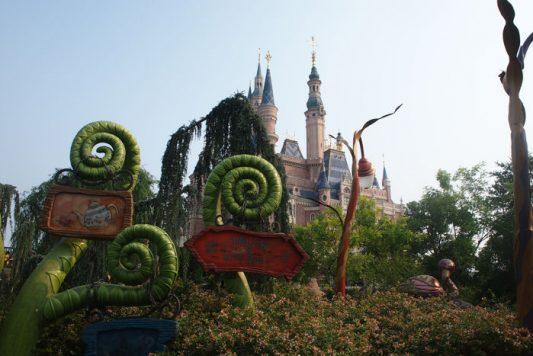 P9185862 533x356 - Un día en Disneyland Shanghái con bebé