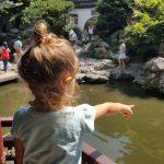 20170917 114354 150x150 - Shanghái en un día con niños: ¿Qué hacer?