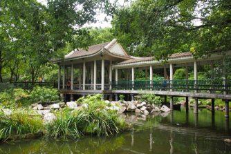 kowloon_parque