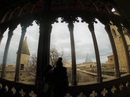 visitando castillo olite