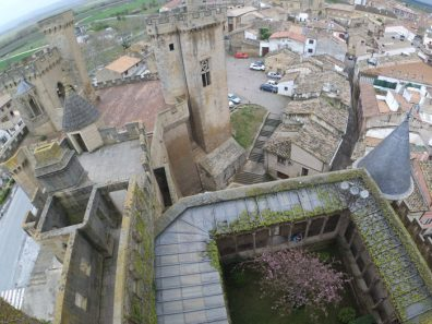 vistas castillo olite