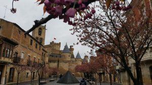 olite 5 300x169 - Un plan para disfrutar el Castillo de Olite con niños