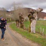 roncesvalles 7 150x150 - Roncesvalles con niños, ideal como base para conocer la Selva de Irati