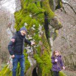 roncesvalles 9 150x150 - Roncesvalles con niños, ideal como base para conocer la Selva de Irati