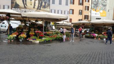 plazas Roma