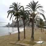 albufereta 13 150x150 - Una playa para ir con bebés en Alicante: la Almadraba