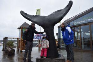 DSC 0045 300x200 - Road trip por Islandia en 7 días con niños