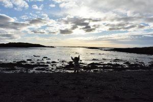 borgarnes 300x200 - Road trip por Islandia en 7 días con niños