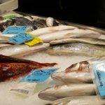 pescaderia puerto mahon 150x150 - 5 Razones para visitar Menorca con niños