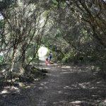 cales coves 4 150x150 - 5 Razones para visitar Menorca con niños