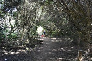 cales coves 4 300x200 - 5 Razones para visitar Menorca con niños