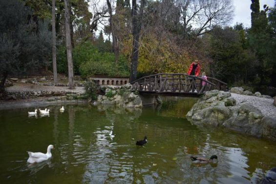 jardin_nacional_atenas