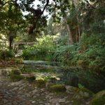 jardin palacio monserrat 150x150 - Monserrate el palacio menos turístico y más bonito de Sintra