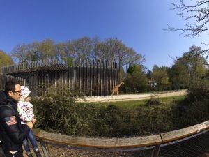 lyon zoo 300x225 - Visitar Lyon con niños o bebés en 2 días