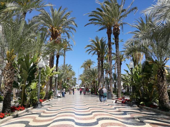 alicante explanada 1 - ¿Visitar en verano Alicante es buena idea?