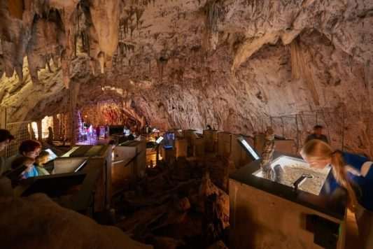 vivarium postojna 533x356 - De la cueva con tren eléctrico de Postojna al Castillo cueva de Predjama