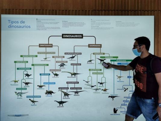 dinosaurios cuenca5 534x400 - Los dinosaurios de Cuenca, una ruta para disfrutar con niños