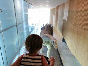 dinosaurios cuenca8 300x225 - Los dinosaurios de Cuenca, una ruta para disfrutar con niños