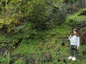 andy bosquelaurisilva 300x225 - Rutas en Andorra con bebés o niños pequeños