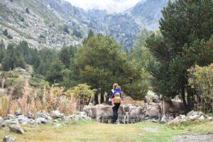 vall dicles 300x200 - Rutas en Andorra con bebés o niños pequeños